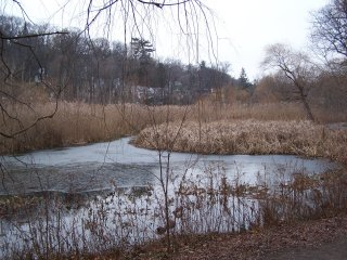 (Grenadier Pond